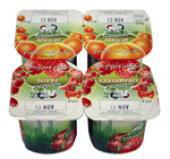 Yoghurt - fruit