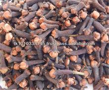 Best Price Wholesale Sri Lanka Dried Clove