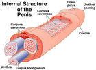 Male Enlargement in Pakistan 03247613682 Penis Enlargement system