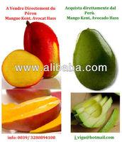 Mango, Mangue,