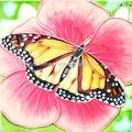 baldosas de cerámica pintado a mano con hermosa imagen de la mariposa