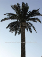Indoor or Outdoor Artificial Date Palm Tree as decorations in hotel for sale
