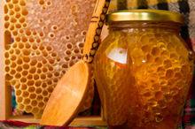 Flower Honey 225 gram 460 gram 850 gram 25 KG