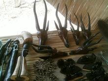 wooden Antilope head