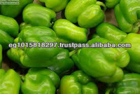 Fresh Green pepper