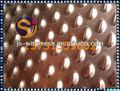 De latón de chapa perforada/bronce de fósforo de hoja de metal perforado