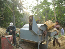 Low Cost Paddy Thresher