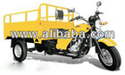 150CC Three Wheel Car Motorcycle