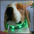 loja de animais de estimação pet shop do mercado de internet