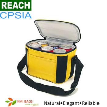 ISO9001 Disposable 600D Polyester 6 Bottle Cooler Bag