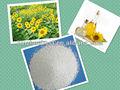 Terre de blanchiment pour la raffinerie d'huile de tournesol