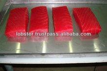 High Quality Hand Cut AAA Grade Fresh BQF Frozen Tuna