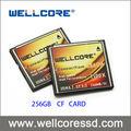 Micro sd/sd card/scheda cf