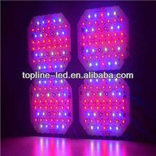 well-designed Matrix S series tomato grow led lighting