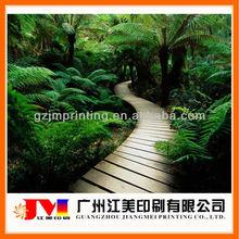 attractive nature fresh landscape room decorative 3D picture printing