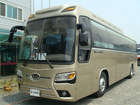 KIa Granbird (Gold)