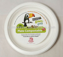 biodegradable disposable BBQ tableware