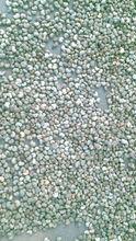 Raw Cashew Nut in shell of Benin origin