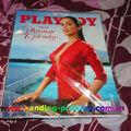 """Marca novo da Playboy revista 2014 Playmate calendário 14 """" x """" 11 calendário de parede"""