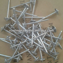 Plain shank Roofing Nails Factory