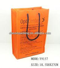 2013 new style pretty shopping bag, paper shopping bag changsha jinding,foldable shopping bag cart