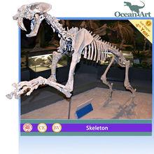Museum Standard Animated Life Size Animals Skeleton--Smilodon