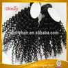 human virgin indian hair kinky curl virgin indian hair china