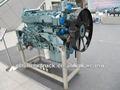 Howo moteur diesel nouveau modèle euro 2 wd 615.47 az6100004401 moteur de camion