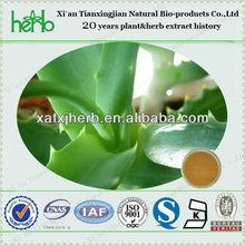 aloe vera gel extract/aloe vera leaf extract/aloe vera extract 4:1~200:1