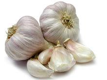 Fresh Natural Garlic from Cameroon