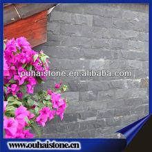 High quality chinese black mushroom stone