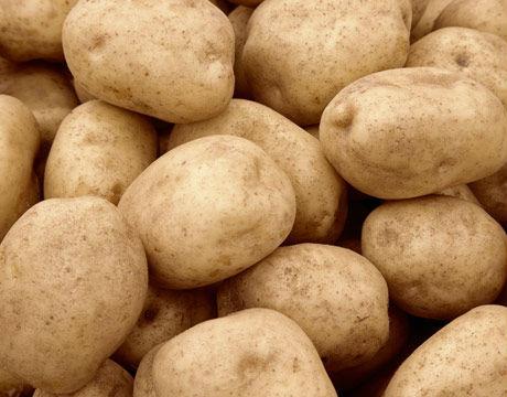 best price fresh potato
