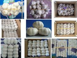 LW-Garlic/Natural Garlic/White Garlic For Hot Sale