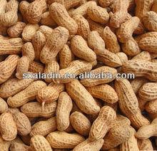 Peanut Extract Luteolin 80%, 90%, 95%, 98% HPLC