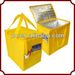 Designer Fashion plastic cooler bag