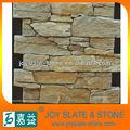 الجدار الكسوة الحجر الطبيعي أنواع ألواح الخرسانة