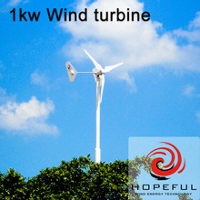 residential wind power 1kw with twin tails