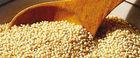 Kiwicha / Amaranto Powder Organic