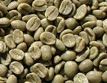 Coffee Green Beans Organic