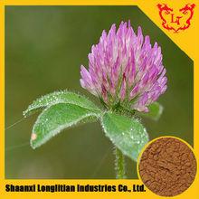 Organic Red Clover Extract Isoflavones 8%,10%,20%