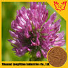 Pure And Natural Red Clover Extract Formononetin 485-72-3