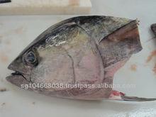 Sashimi Yellowfin Tuna Head