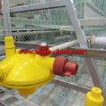 taiyu سهلة التركيب معدات للدواجن