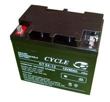 12V 80AH Cycle UPS Lead Sealed Acid Backup Battery