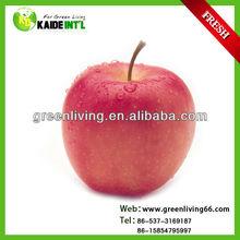 2014 fresh delicious fuji apple wholesaler (138/150/163/175/198)