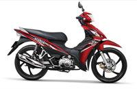 Suzuki Viva FI 115cc motorbike NEW 2013