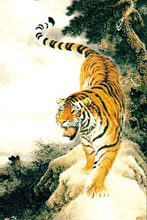 powerful tiger go down hill landscape animal oil painting