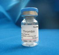 Thrombin from bovine plasma