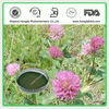 Red Clover Extract 8%