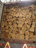 Teak logs squares rough sawn timber